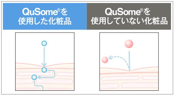 QuSome®を使用した化粧品と使用していない化粧品