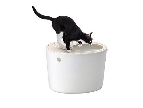 上から猫トイレ