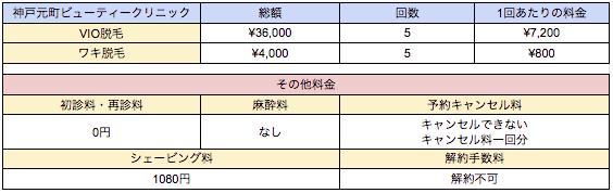 神戸元町ビューテイークリニックの料金表
