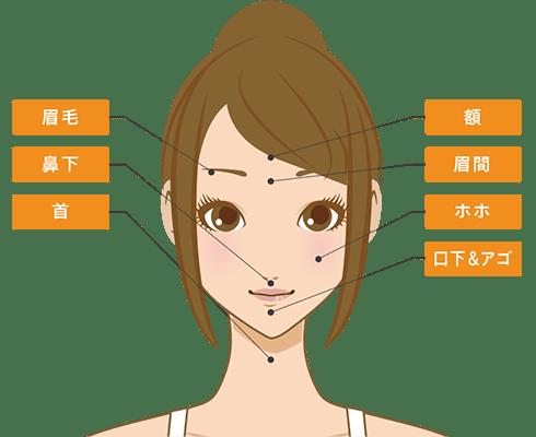 アリシアクリニックの脱毛部位画像